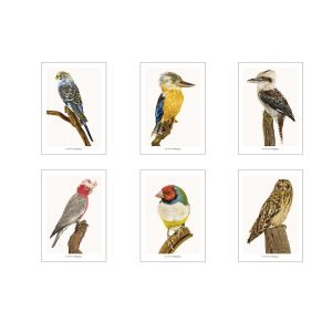 Set of greeting cards CC_set_birds