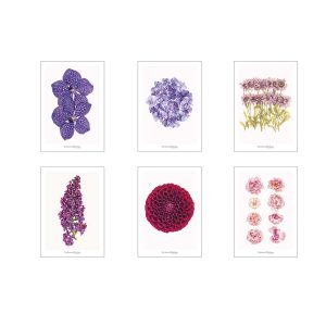 Set of greeting cards CC_set_flowers