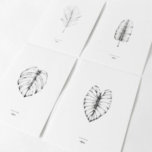 Plants & leaves card set of 4