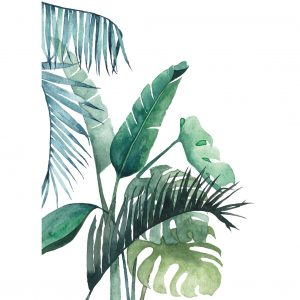 Art Print Botanical 01