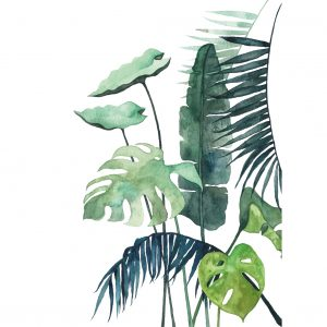 Art Print Botanical 03